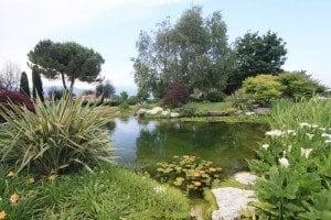 Biolaghi e Giardini: un nuovo modo di vivere il giardino