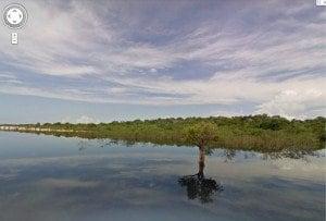 Le immagini dell'Amazzonia su Google Street View